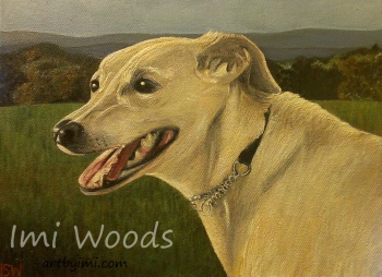 I painted my nutritionists greyhound / whippet