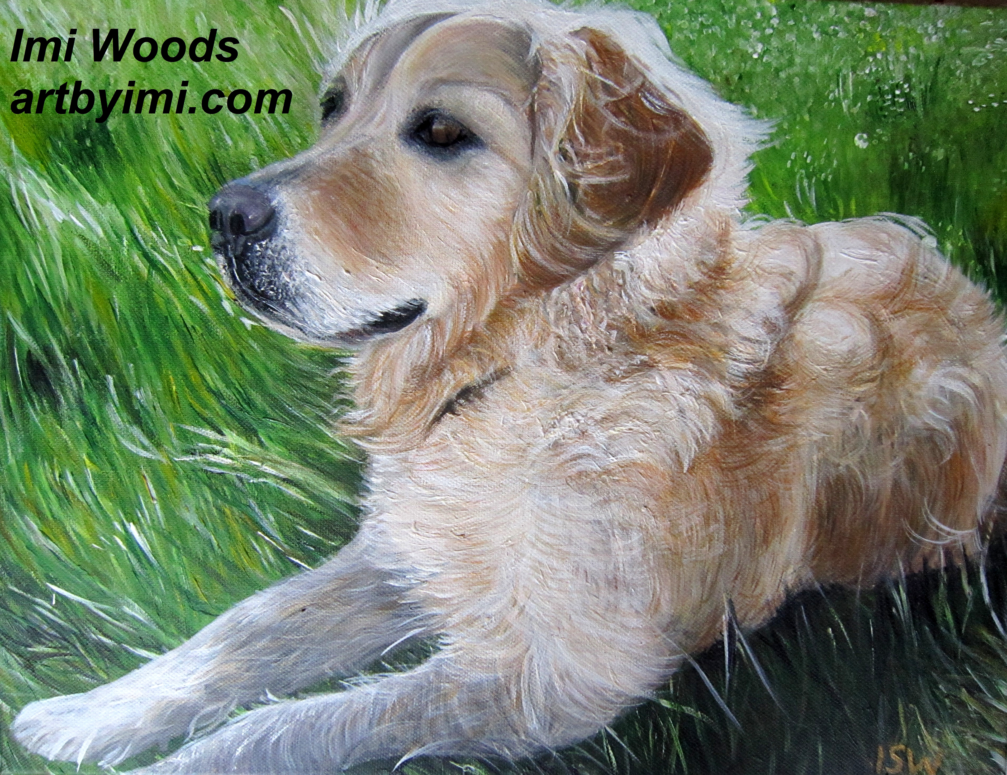 How To Paint A Golden Retriever Animal Art By Imi