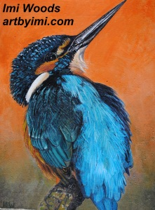 kingfisher ARTbyIMI