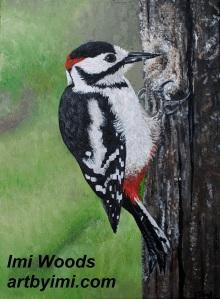 woodpecker ARTbyIMI