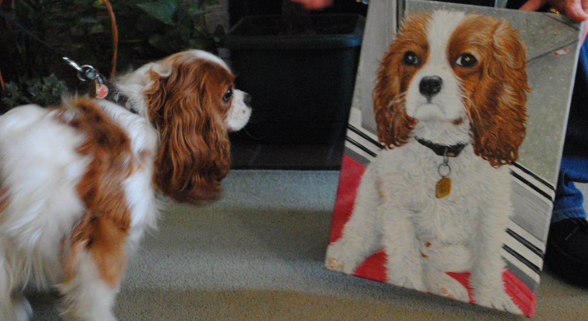 How to paint a King Charles Cavalier Spaniel