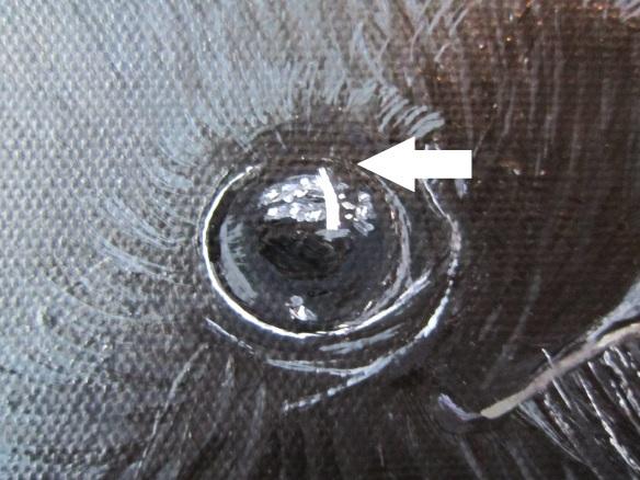 Rim blackeye