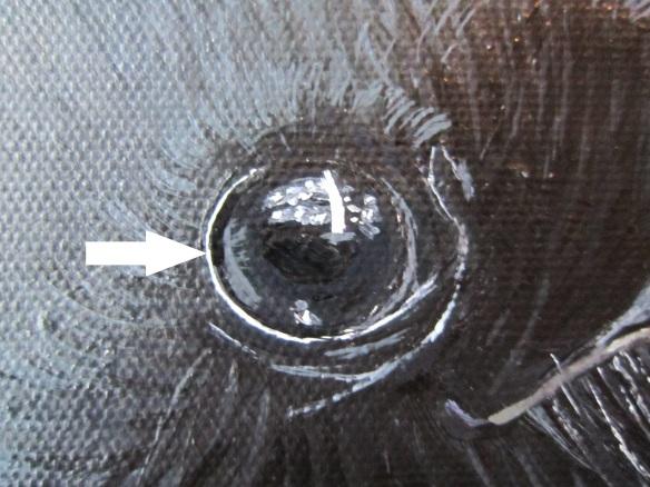 Rim eye