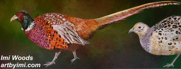 Pheasants ARTbyIMI